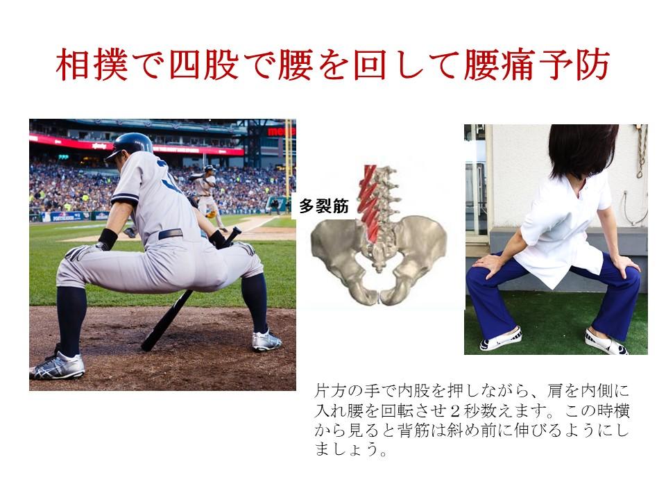 四股をしながら腰を回すと腰痛が予防できる