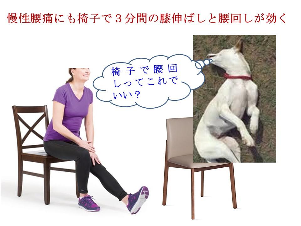 作業中の腰痛には3分間の膝伸ばしと腰回しが効く