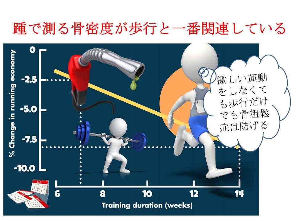 かかとの骨密度を測るQUSは歩いている量を判定できる