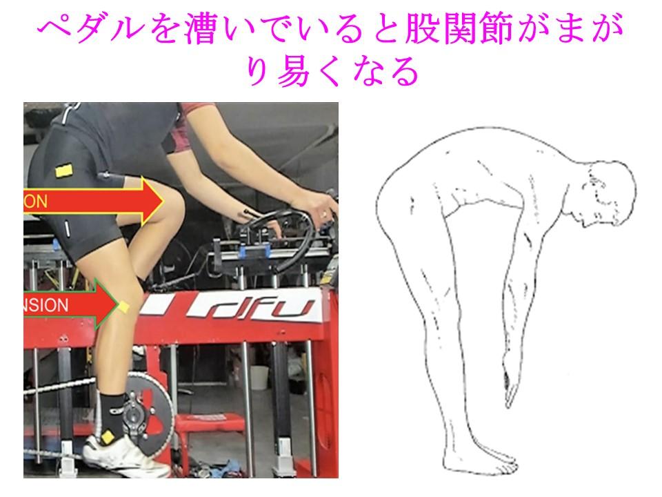 ペダルを漕ぐと足首だけでなく股関節も柔軟になる